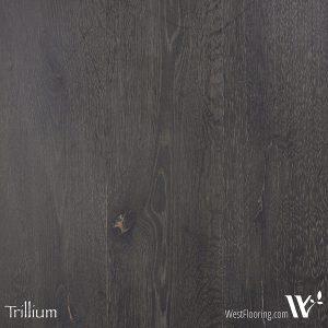 Grey Scale - Trillium