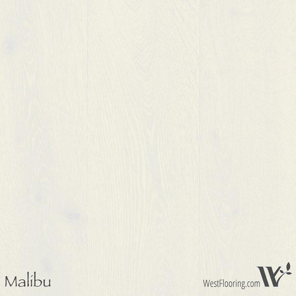 Winter Beach - Malibu