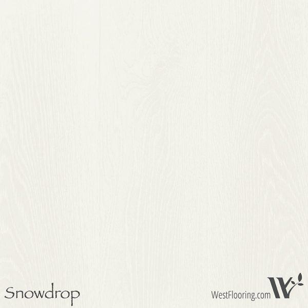 Winter Beach - Snowdrop