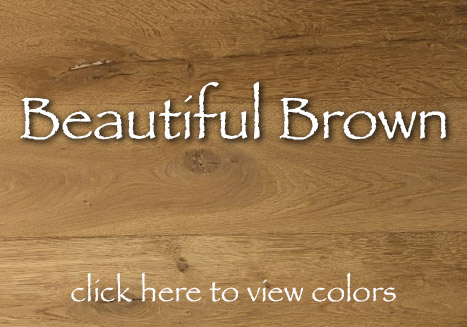 Beautiful Brown Color Collection