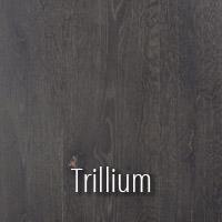 Trillium Sample