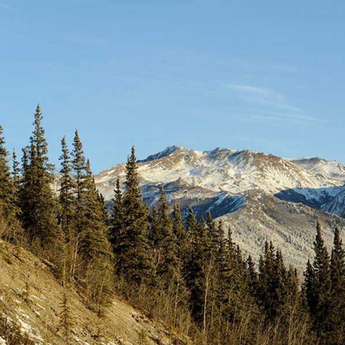 snow-cap-mountain-top-blog