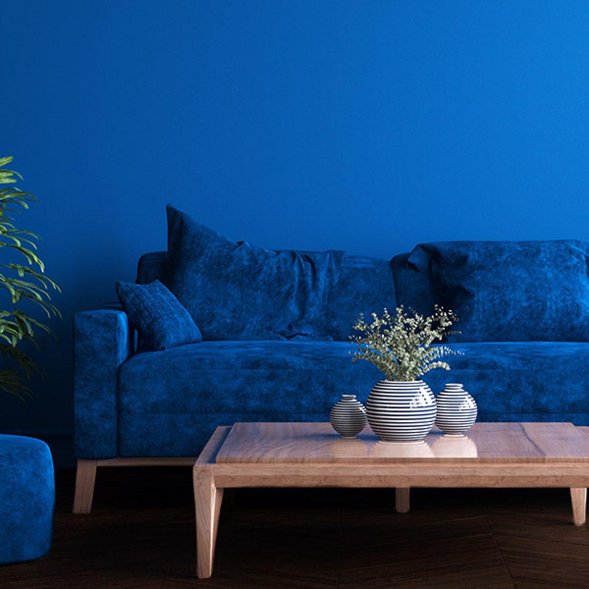 Cobalt Blue Living Room with Dark Hardwood Floors